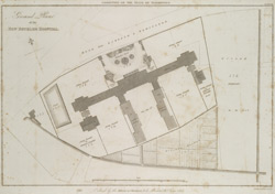 Ground Plan of the NEW BETHLEM HOSPITAL